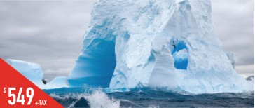 F4~6  纽芬兰冰山探索四~六日游